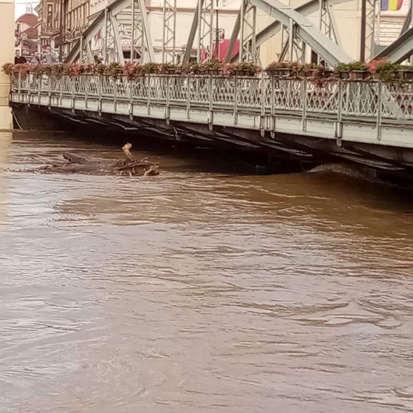 inundatii la podul de fier 12